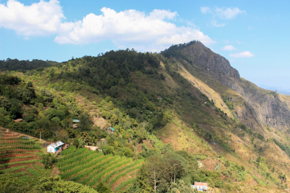 Karuna desde la montaña.