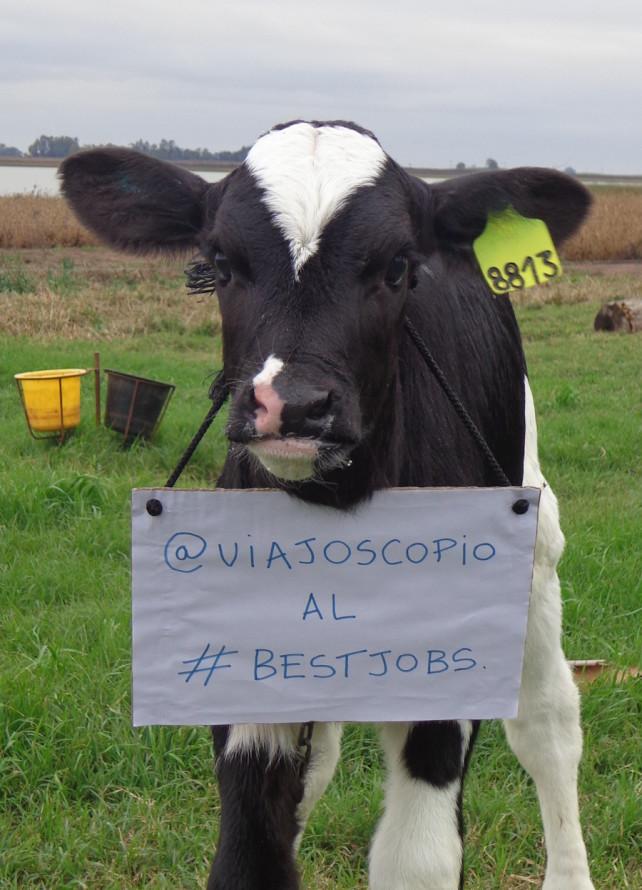 viajoscopio.com - people´s support @viajoscopio al #bestjobs - The Best Job in the World-10