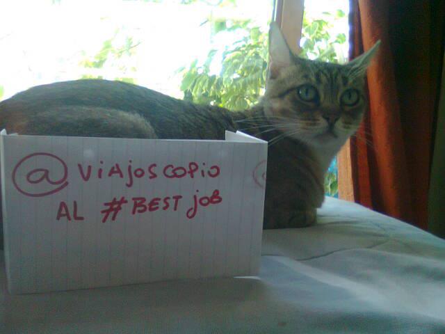 viajoscopio.com - people´s support @viajoscopio al #bestjobs - The Best Job in the World-192