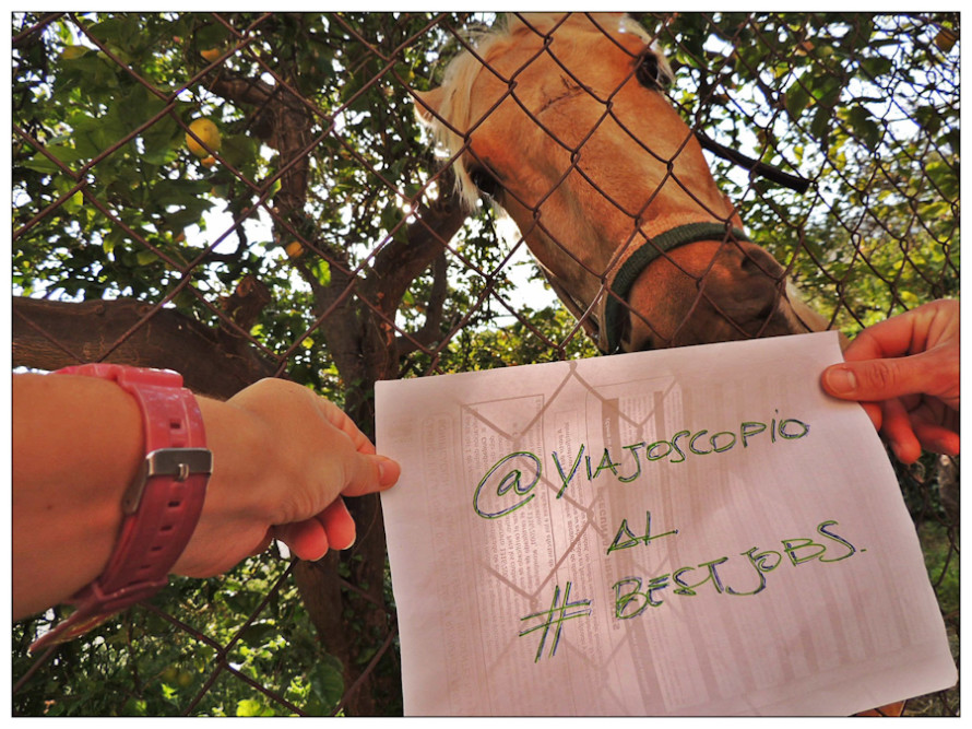 viajoscopio.com - people´s support @viajoscopio al #bestjobs - The Best Job in the World-201