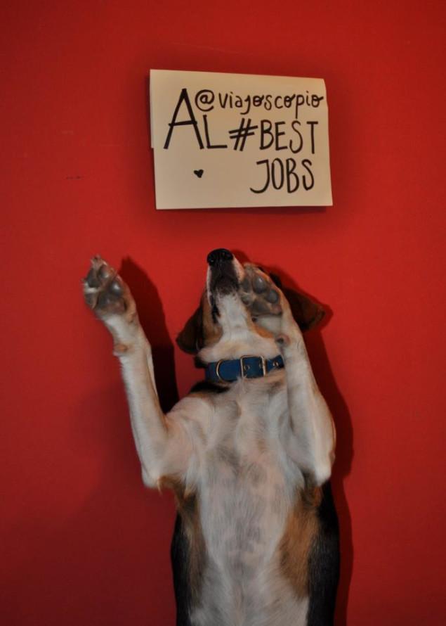 viajoscopio.com - people´s support @viajoscopio al #bestjobs - The Best Job in the World-257