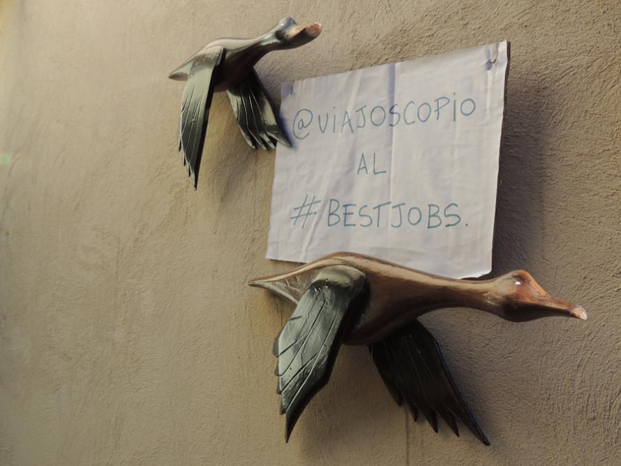viajoscopio.com - people´s support @viajoscopio al #bestjobs - The Best Job in the World-94