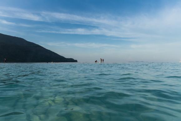 ¡Los peces y corales se ven incluso desde arriba del agua!