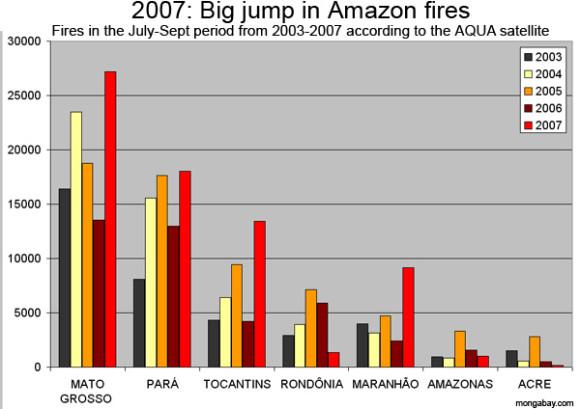 Los bosques del amazonas en sudamérica, los de centroamérica y los del este de Rusia también atraviesan una situación semejante.