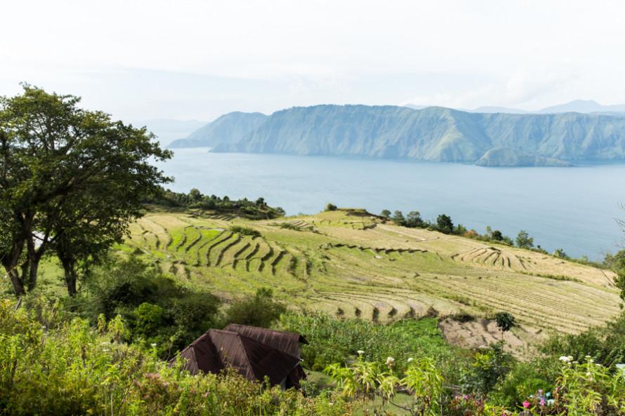 viajoscopio.com - Tuk Tuk, Samosir Island, Danau Toba, North Sumatra, Sumatra, Indonesia -195