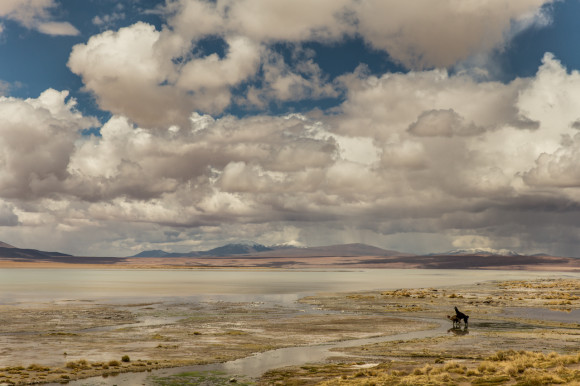andresbrenner.com - Reserva Natural Eduardo Avaroa, Laguna Colorada, Laguna Verde, Salar de Uyuni, Desierto de Siloli, Tupiza a Uyuni, Bolivia-47
